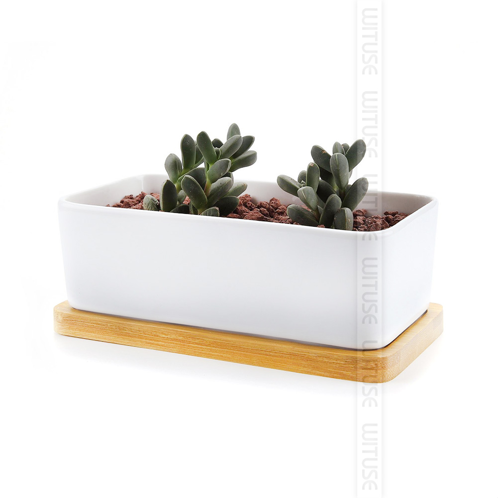 gartenbedarf einfache art blument pfe kindergarten pflanzen bambus tablett e24b ebay. Black Bedroom Furniture Sets. Home Design Ideas