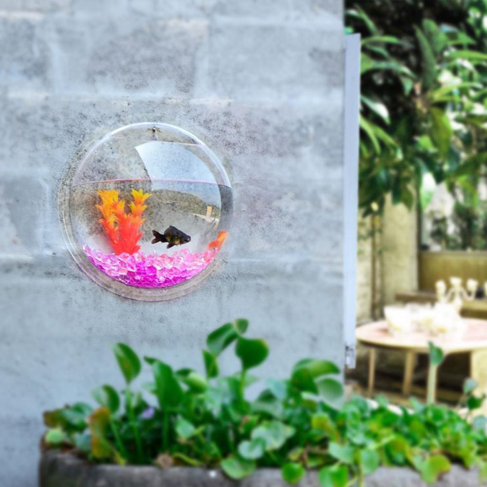 Wall mount hanging fish bubble aquarium betta bowl tank for Betta fish decor