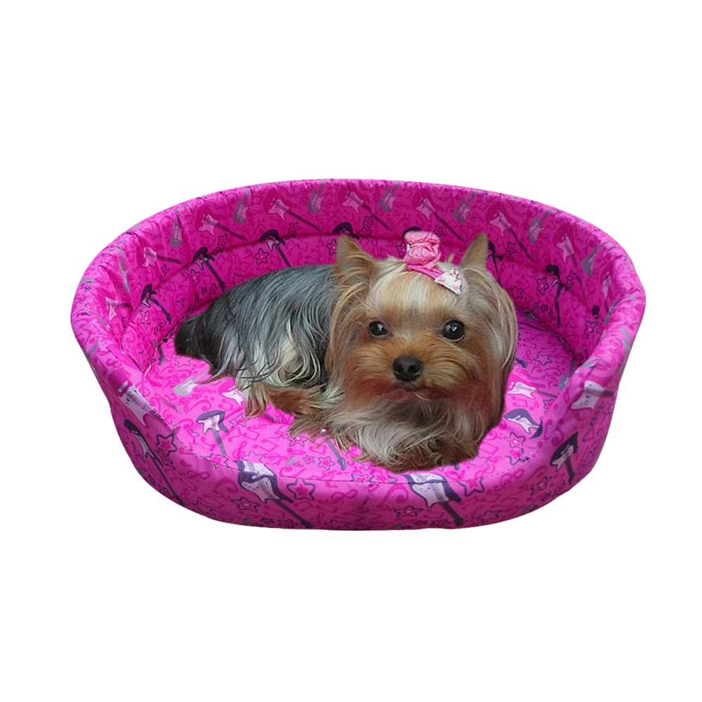 Where To Buy Dog Beds In Hong Kong