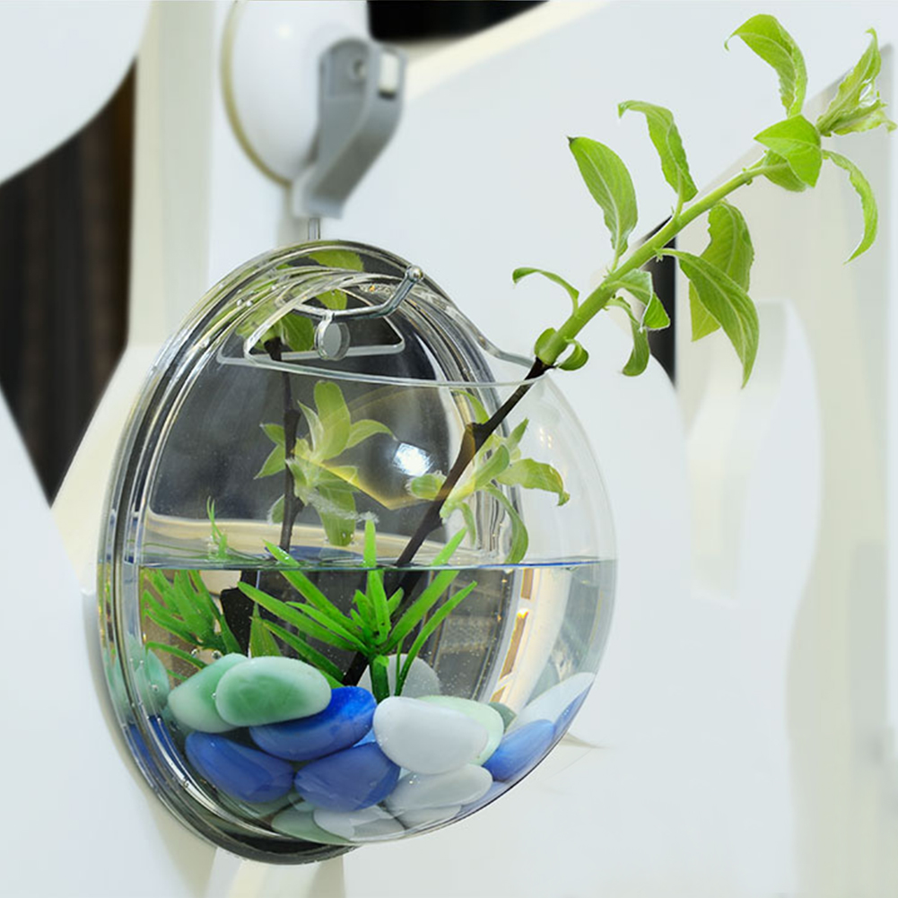 Novel wall mount betta bowl acrylic aquarium fish tank for Acrylic fish bowl
