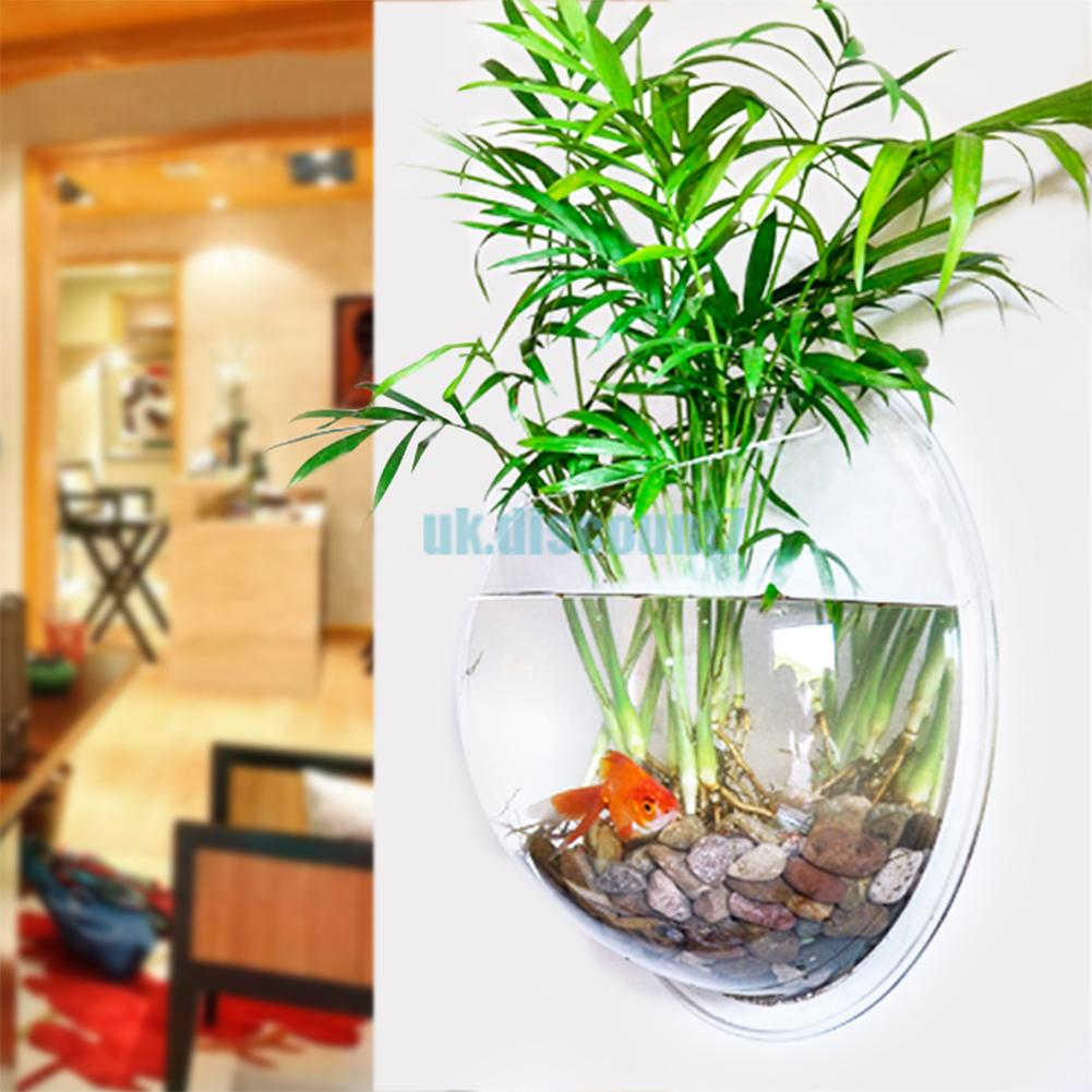Wall Mount Fish Bowl Acrylic Aquarium Tank Goldfish Plant